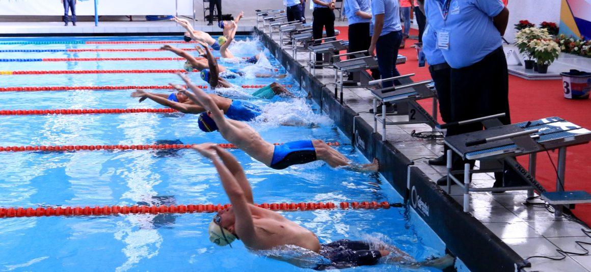 Virtus is seeking Swim Committee Members (Voluntary)